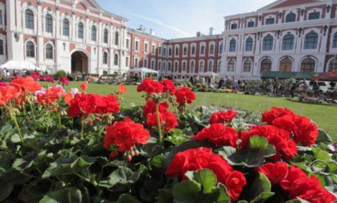 Latvijas Lauksaimniecības Universitātes muzejs