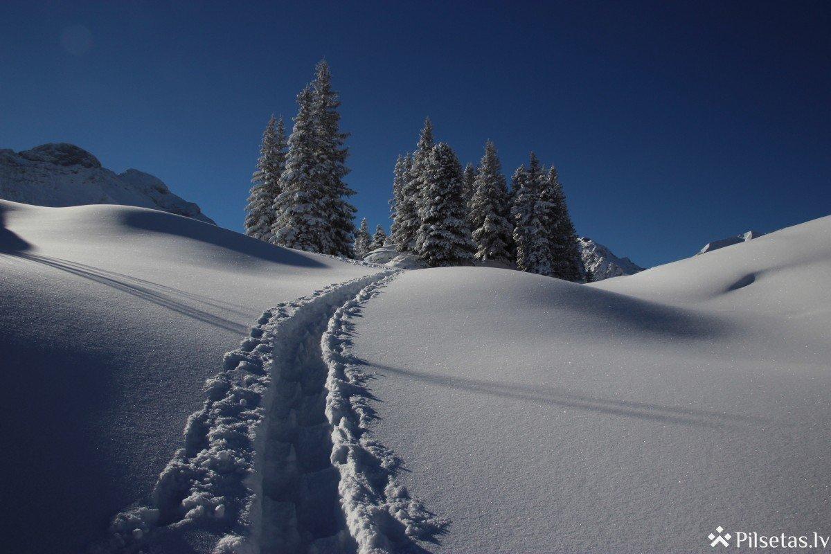 Vai šogad vēl varam gaidīt sniegotus Ziemassvētkus: bukmeikeri un sinoptiķi atklāj laikapstākļu prognozes gada nogalei