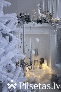 Radi siltas atmiņas Ziemassvētku fotosesijā!
