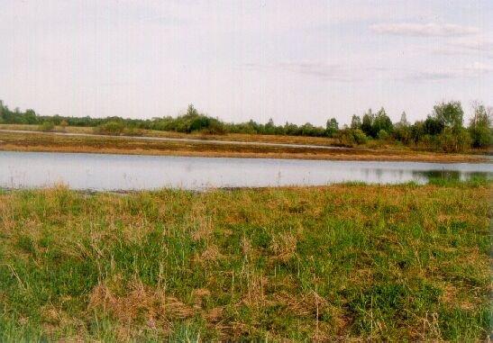 Lielupes palienes pļavas