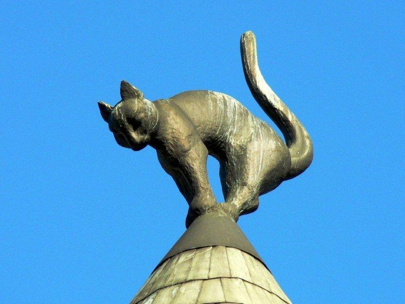 Kaķu nams