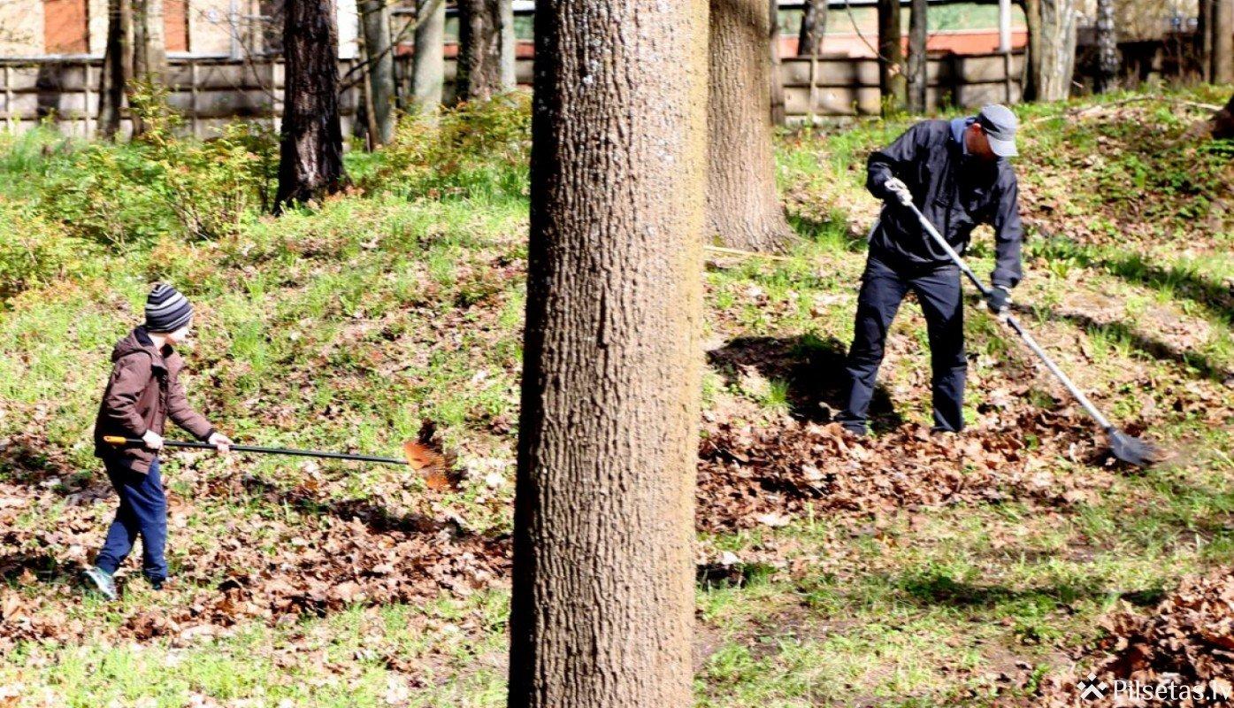 Aktīvākajiem talkotājiem Rīgas dome dāvinās ceriņu stādus